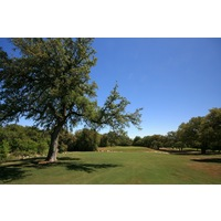 Of the three nines at Hill Country Golf Club, the Oaks features the most trees that come into play in the fairway.