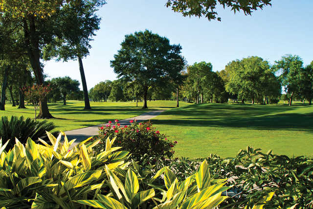Gold/White at Pine Forest Country Club in Houston
