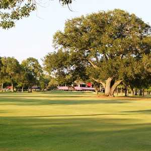 Pine Forest CC