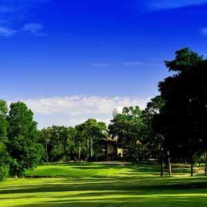 Golf course green panorama