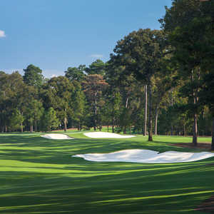 Bluejack National: #6