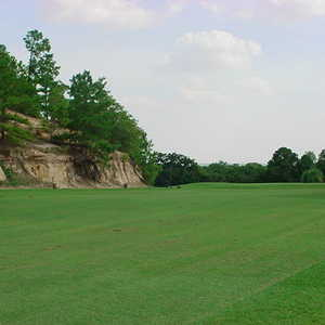 Pine Forest GC: #5