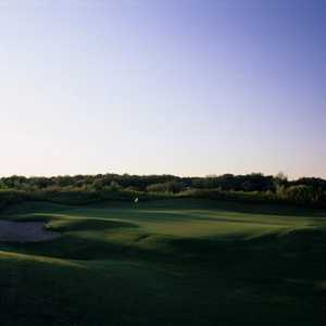 Grapevine GC - Bluebonnet: #7