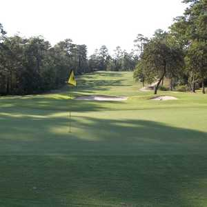 Wedgewood GC: #16