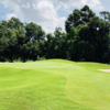 A view of a hole at Longwood Golf Club.
