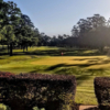 A sunny day view of a green at Conroe Country Club (Renee Landon).