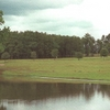 A view from Wood Hollow Golf Club