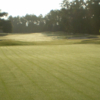 View of a green at Longwood Golf Club