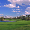 A sunny day view from Palmer at Woodlands Country Club