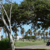 A view of a tee at Gulf Winds Golf Course.