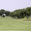 A view of a fairway at Odessa Country Club.