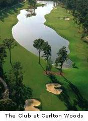 Diamondback Golf Academy