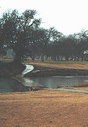 Hancock Park Municipal Golf Course - The approach over Sulphur Creek to the No. 13 green.