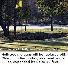 Hollytree's Green
